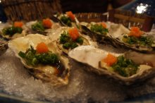 Raw oysters 2